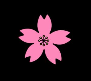 サクラの花 フリー素材 薄ピンク