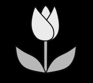 チューリップ フリー素材 白黒