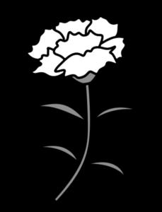 カーネーション 白黒フリー素材 母の日