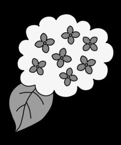 あじさい 白黒フリー素材 雨の日イラスト