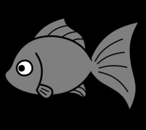 金魚 フリー素材 夏イラスト 無料 黒