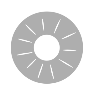 パイナップル 白黒フリー素材 カット 断面