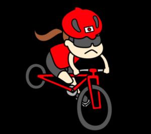 自転車 パラリンピック 日本代表 フリー素材 女子